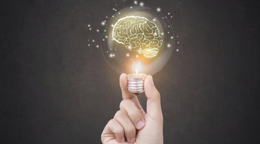 Webinar sobre neurobusiness será realizado em agosto